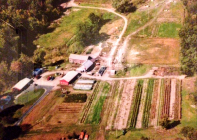Farm overview